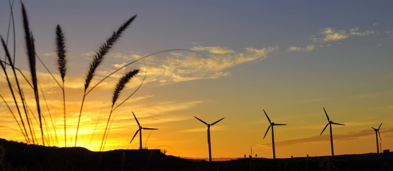 New wind companies will arrive in Matamoros