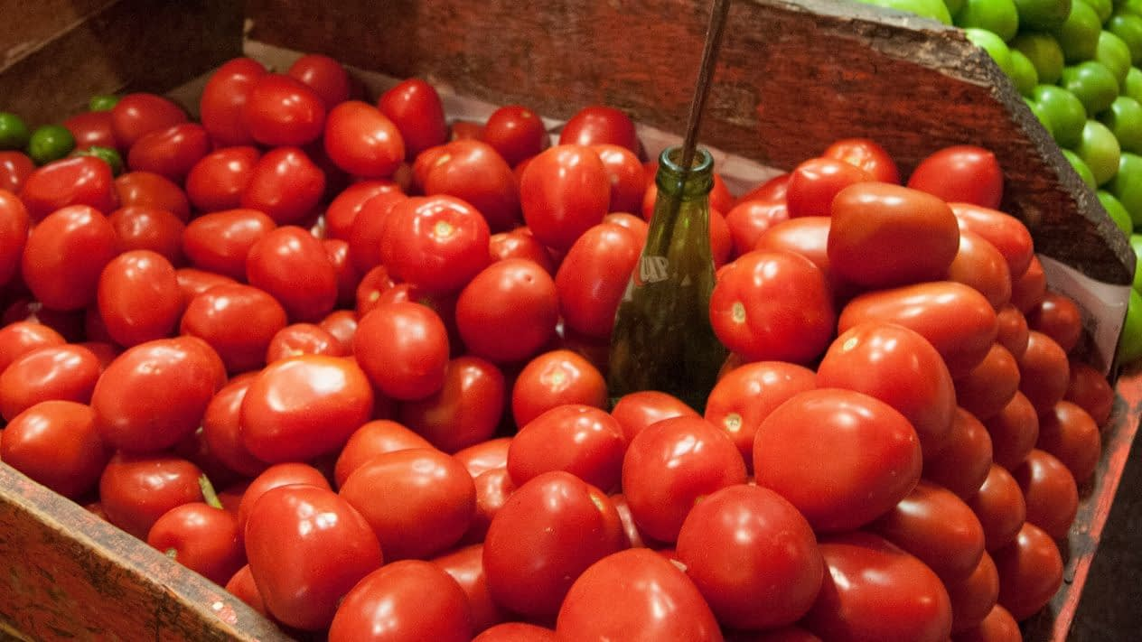 Mexico and the U.S. close agreement on the Mexican tomato
