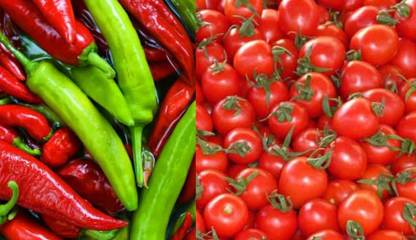 The U.S. prohibits the passage of Mexican chili peppers and tomatoes