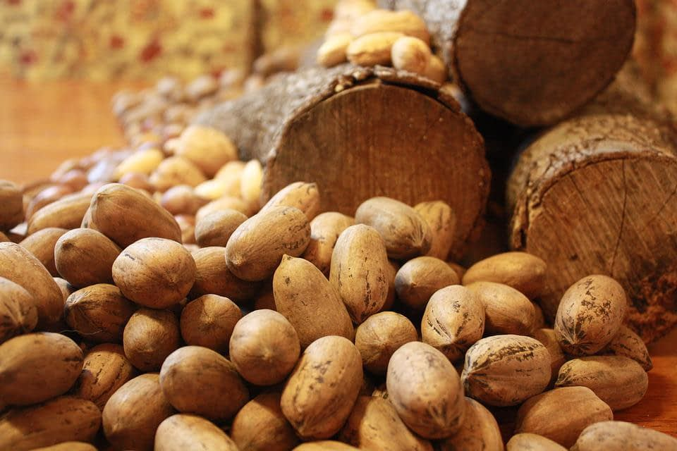 Record Year for Pecan Production in NM